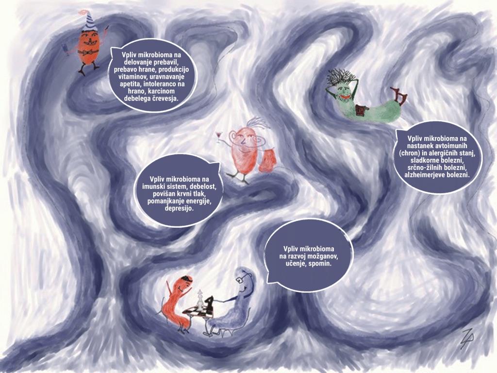 Kronične bolezni in črevesje